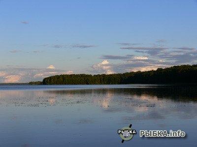красногвардейское озеро рыбалка летом